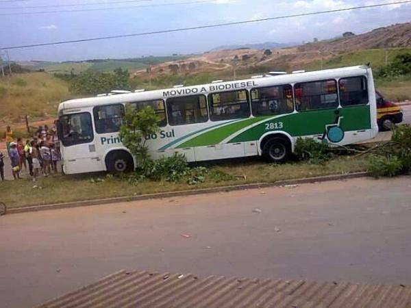 ônibus da Princesa do Sul subiu no canteiro. Foto: Janaína Pires / Reprodução Facebook