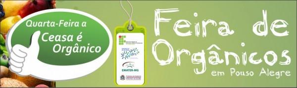 FEIRA ORGANICOS - FAIXA