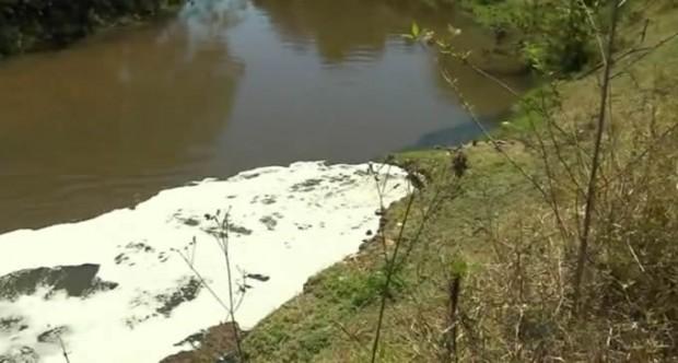 Moradores acreditam que esgoto esteja causando mortandade em Itajubá (Foto: Reprodução EPTV)