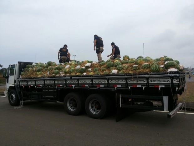 Pelo menos 1 tonelada era transportada no caminhão camuflado com melancia. Foto: Divulgação PRF