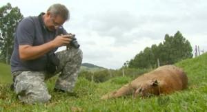 Fernando Bonillo, de 58 anos, era uma das principais referências em meio ambiente no Sul de MG (Foto: Reprodução EPTV)