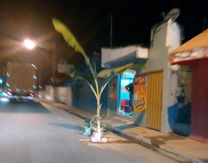 Atitude inusitada aconteceu na Rua Antônio Scodeler, principal via de acesso ao bairro Faisqueira.