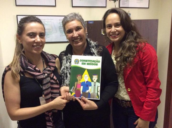 O livro foi escrito pela servidora de carreira da Câmara de Pouso Alegre, Madu Macedo, com coautoria das servidoras Mônica Fonseca e Tatiana Rezende.