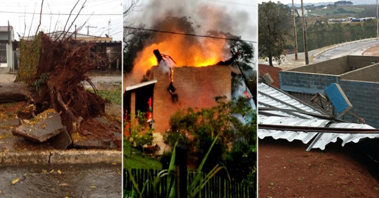 Árvore foi derrubada no bairro Foch; Temporal devastou fábrica da Silvar (Tigre); Raio caiu sobre casa, que pegou fogo em Congonhal.