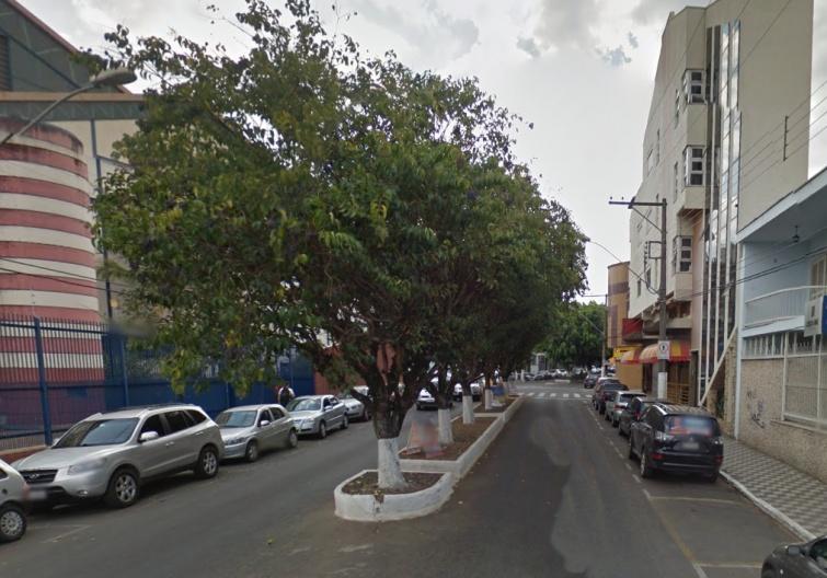 Mais de 100 arvores seriam retiradas e substituídas por palmeiras imperiais. Foto: Google Maps