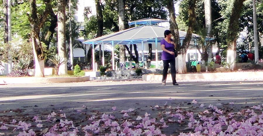 Rede promoverá roda de conversa ao ar livre em coreto da Praça João Pinheiro.
