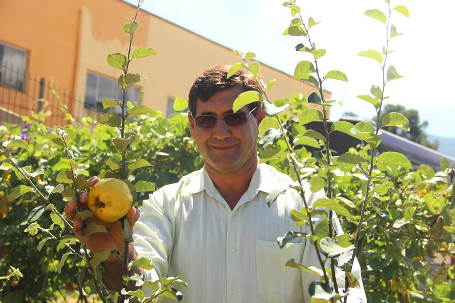 O prefeito de Delfim Moreira, Fernando Coura, visita o pequeno marmelal na horta da escola .