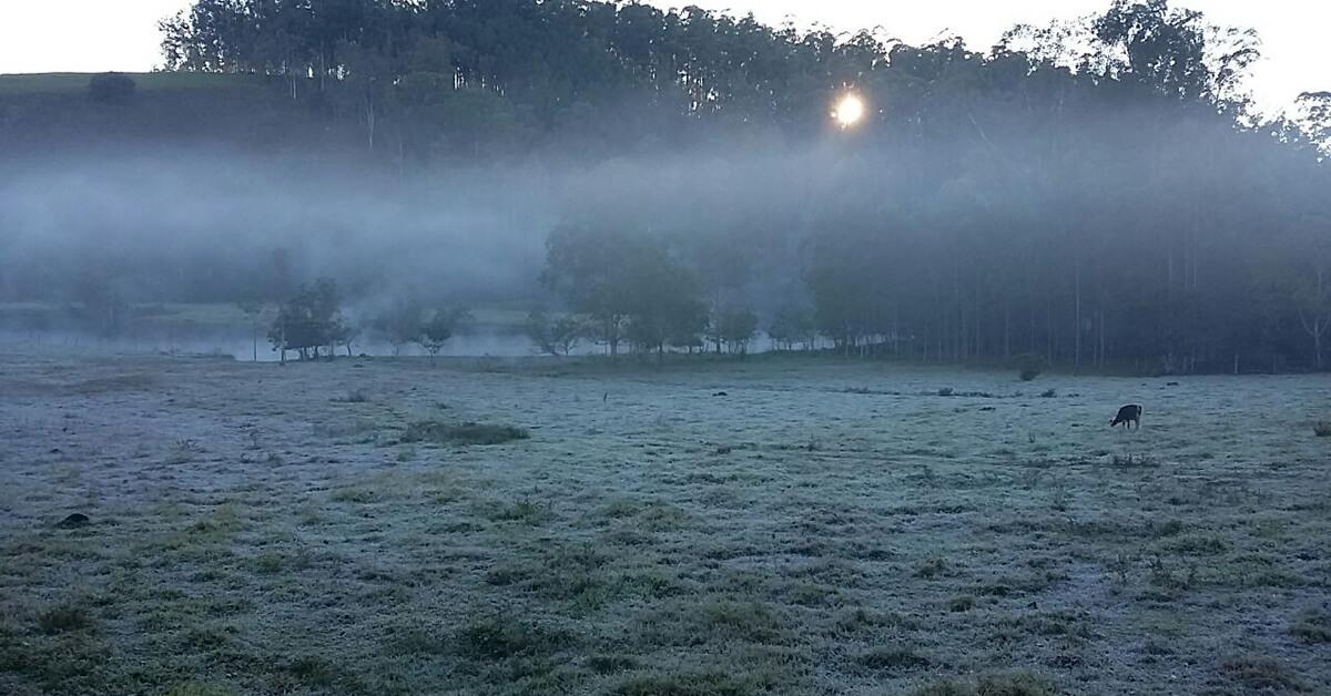 Manha de  segunda-feira (13) próximo ao Parque Natural (Foto: Fabrício)
